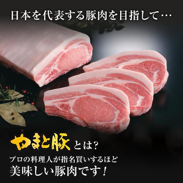 やまと豚肩ロース焼肉用500g |やまと豚 豚肉 やまと 豚 お取り寄せグルメ お取り寄せ グルメ 豚ロース 食品 食べ物  プレゼント ギフト 焼肉|frieden-shop|07
