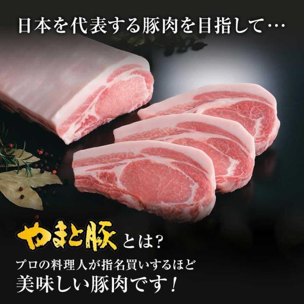 銀座やまと監修シリーズセット NS-F |やまと お取り寄せグルメ 豚丼 メンチカツ 生姜焼き 豚 やまと豚 おかず おかずセット お肉 お取り寄せ|frieden-shop|08