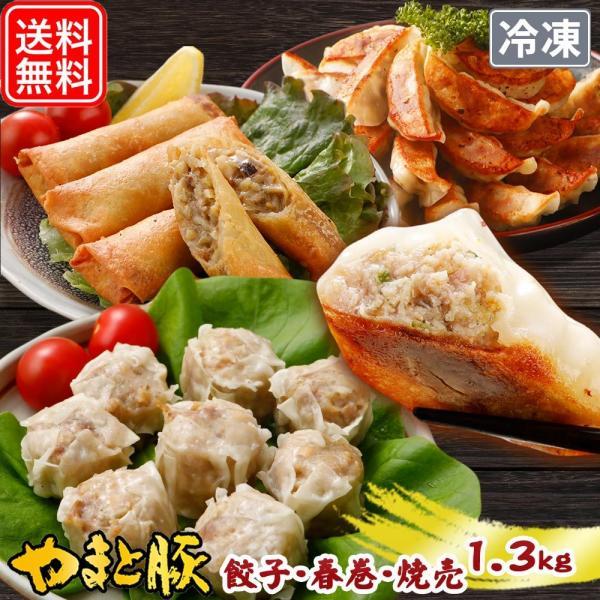 餃子春巻セット
