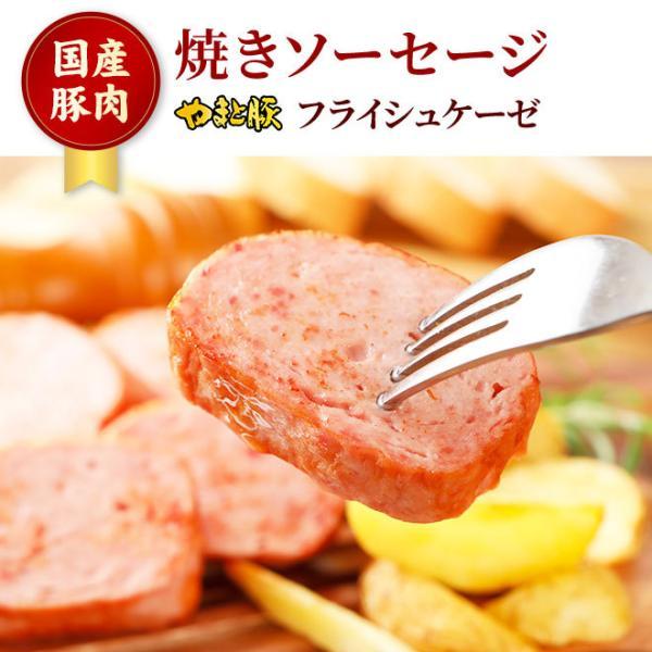 やまと豚 フライシュケーゼ 200g | [冷蔵] やまと豚 豚肉 やまと 豚 お取り寄せグルメ お取り寄せ グルメ 食品 食べ物 ソーセージ お肉 お惣菜 肉|frieden-shop|02