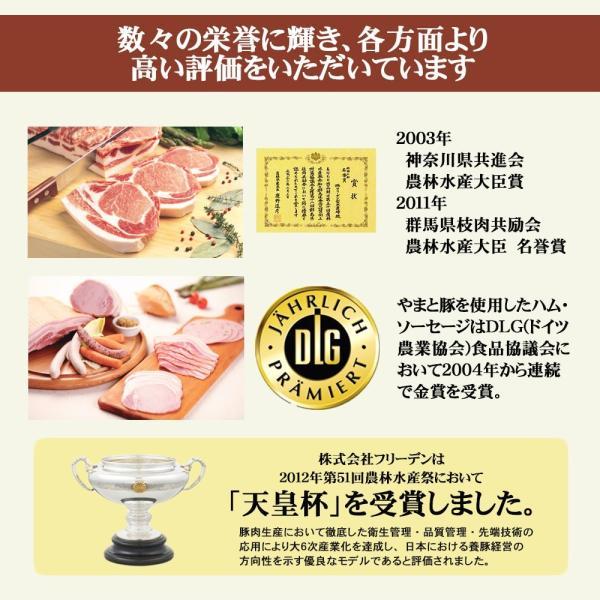 やまと豚生姜焼(ロース薄切り)200g味付け肉 |やまと豚 豚肉 やまと 豚 お取り寄せグルメ お取り寄せ グルメ 味付き ステーキ 焼肉|frieden-shop|12