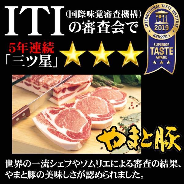 やまと豚生姜焼(ロース薄切り)200g味付け肉 |やまと豚 豚肉 やまと 豚 お取り寄せグルメ お取り寄せ グルメ 味付き ステーキ 焼肉|frieden-shop|06