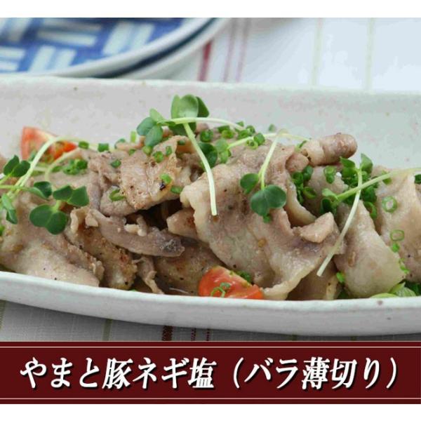 やまと豚ネギ塩(バラ薄切り)200g味付け肉 | [冷蔵] やまと豚 豚肉 やまと 豚 お取り寄せグルメ お取り寄せ グルメ 食品 食べ物  プレゼント  味付き 焼肉|frieden-shop|02