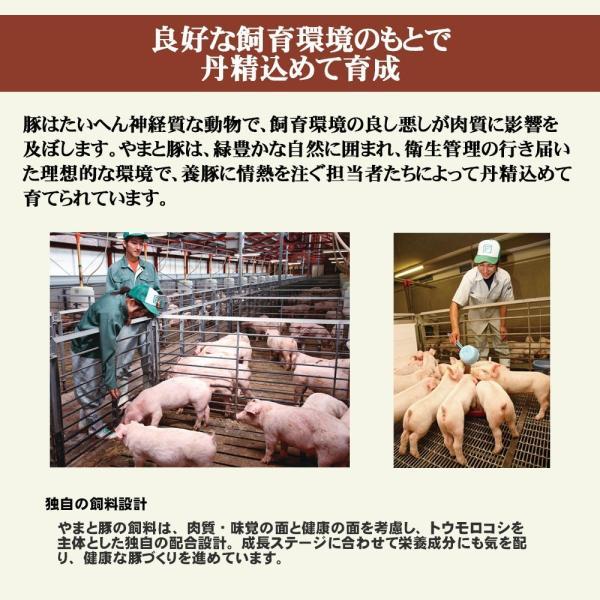 やまと豚ネギ塩(バラ薄切り)200g味付け肉 | [冷蔵] やまと豚 豚肉 やまと 豚 お取り寄せグルメ お取り寄せ グルメ 食品 食べ物  プレゼント  味付き 焼肉|frieden-shop|11