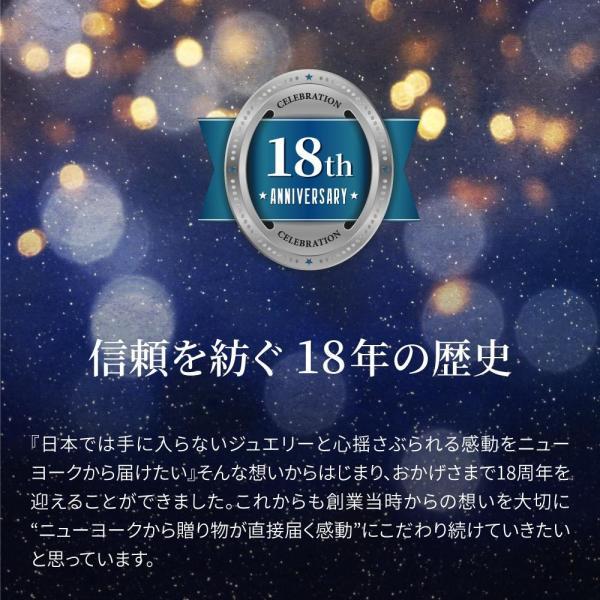 ネックレス レディース ダイヤモンド cz ゴールド 人気 プレゼント|fromny|15