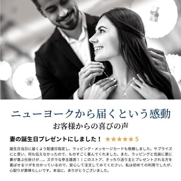 ネックレス レディース ダイヤモンド cz ゴールド 人気 プレゼント|fromny|08