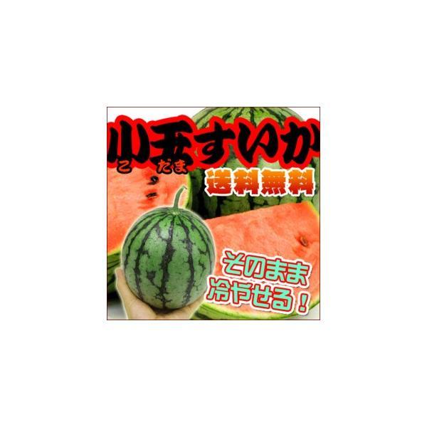 切らずに冷やせる!完熟小玉すいか2玉 【送料無料】|fruit-sunny