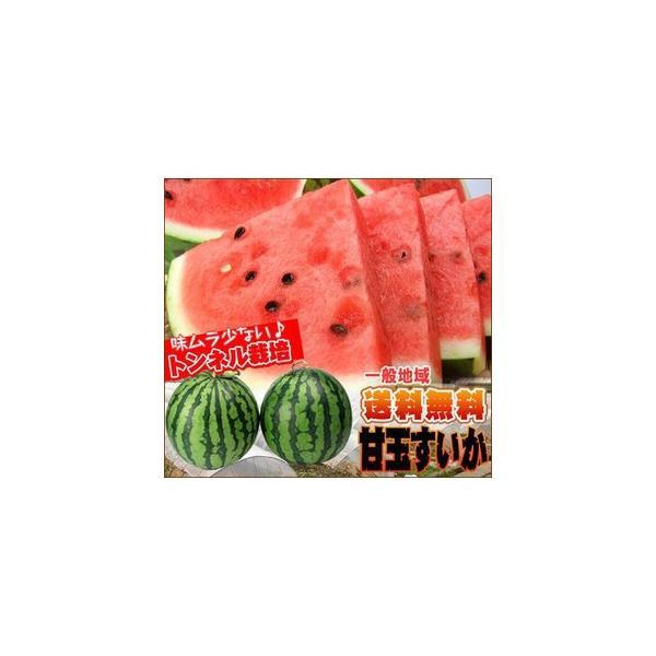 愛媛産 夏だ!甘玉すいか1玉 送料無料 fruit-sunny