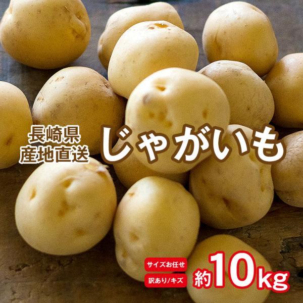訳あり産地直送長崎県産じゃがいも新じゃが新じゃがいも約10kg馬鈴薯ニシユタカテジマさんじゅう丸ながさき黄金メークイン