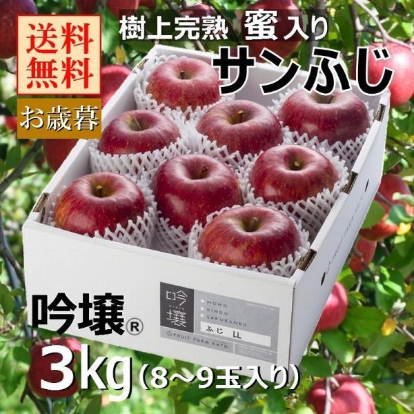 通販限定【送料無料】福島 樹上完熟蜜入り サンふじりんご 2Lサイズ 3kg(8〜9玉入り) 贈答品 ふくしまプライド。体感キャンペーン(果物/野菜)|fruitfarmkato
