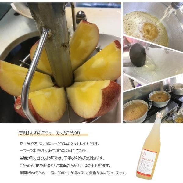 【送料無料】樹上完熟 ストレート天然果汁100% 吟壌ふじりんごジュース 6本セット ふくしまプライド。体感キャンペーン(お酒/飲料)|fruitfarmkato|02