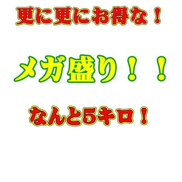 宮崎マンゴー 訳あり(規格外)加工用 メガ盛り 約5キロ クール便発送 JA宮崎中央 完熟マンゴー fruitkanmiya-ggy 06