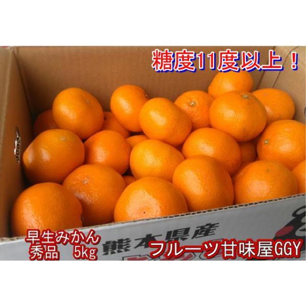 早生みかん 秀品 1箱5kg サイズL・M・S 熊本産 フルーツ グルメ fruitkanmiya-ggy