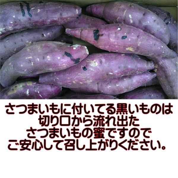TV ガッテン ためしてガッテンで紹介♪さつまいも 蜜芋 紅はるか 熊本産 訳あり 1箱 箱込10キロ(9kg+保証分500g) グルメ|fruitkanmiya-ggy|05