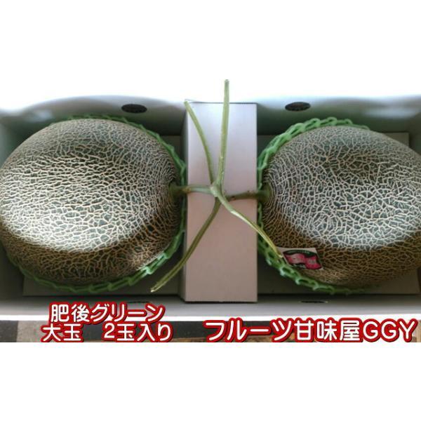 肥後グリーンメロン 熊本産 大玉 2玉入り fruitkanmiya-ggy