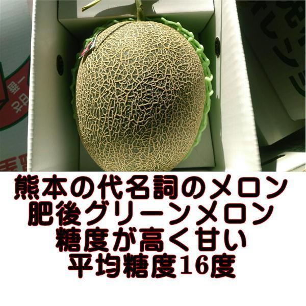 肥後グリーンメロン 熊本産 大玉 2玉入り fruitkanmiya-ggy 02