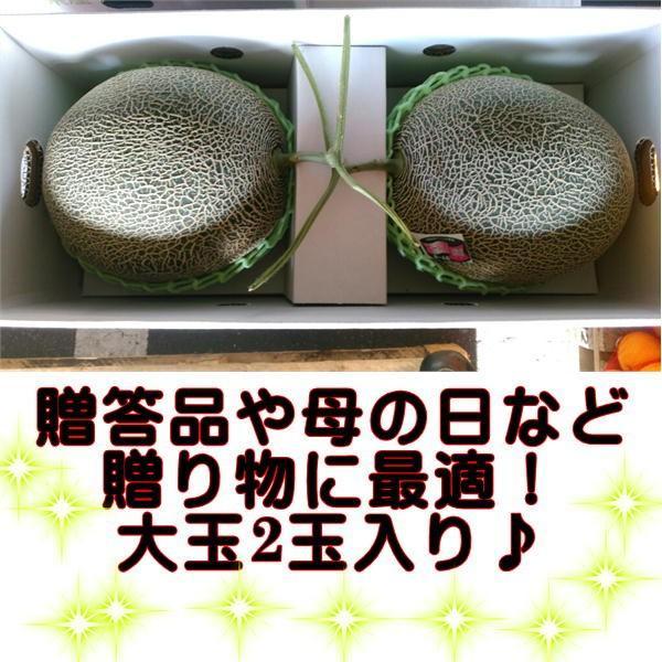 肥後グリーンメロン 熊本産 大玉 2玉入り fruitkanmiya-ggy 03