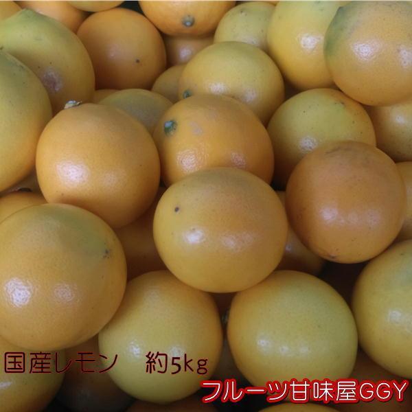 国産レモン 秀品 サイズ3L〜S 熊本産 1箱 箱込約5kg|fruitkanmiya-ggy