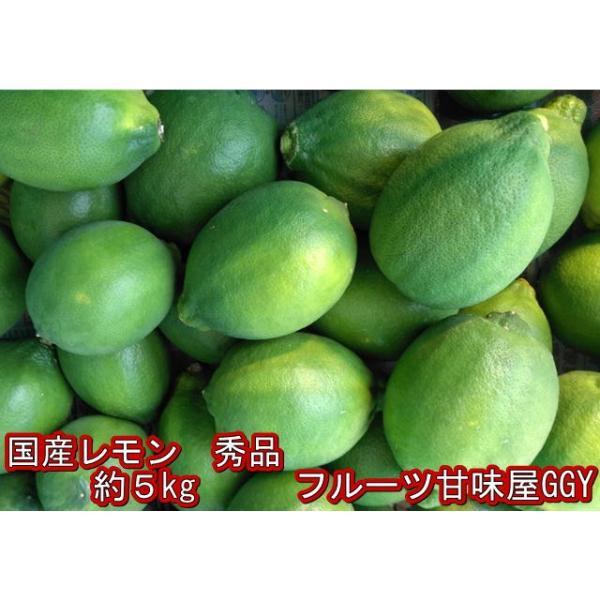 国産レモン 秀品 サイズ3L〜S 熊本産 1箱 箱込約5kg|fruitkanmiya-ggy|04