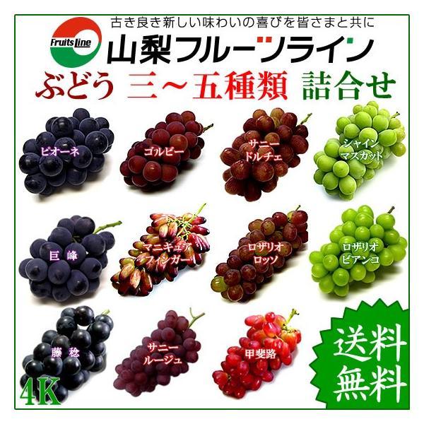 ぶどう 詰め合わせ おまかせ3種類セット 4kg 山梨県産  産地直送 送料無料一部地域を除く|fruits-line