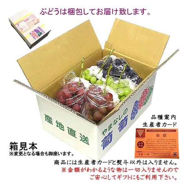 ぶどう 詰め合わせ おまかせ3種類セット 4kg 山梨県産  産地直送 送料無料一部地域を除く|fruits-line|02