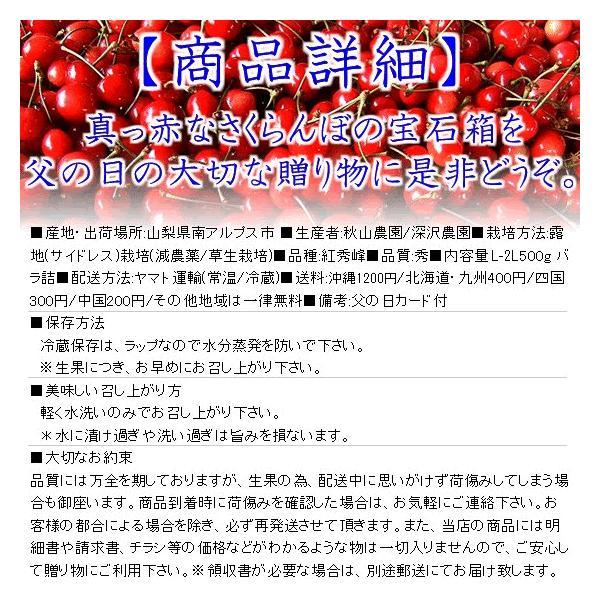 サクランボ さくらんぼ 紅秀峰 父の日 ギフト  秀 2L〜Lサイズ 500g バラ 送料無料 一部地域を除く fruits-line 02