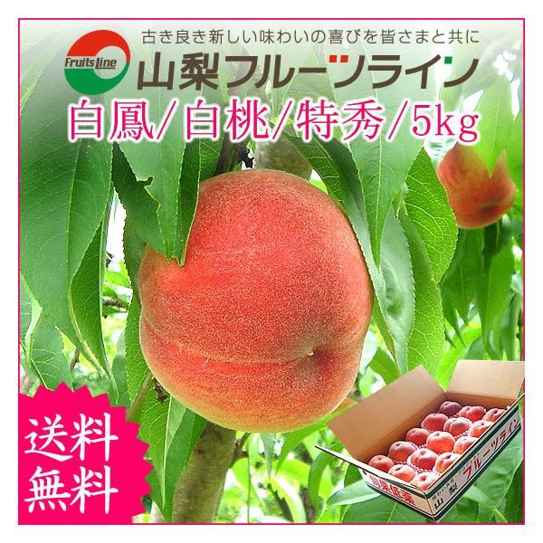 桃 山梨 お中元ギフト フルーツ 特産品 白鳳 白桃 黄金桃 硬い桃 特秀 5kg 送料無料 一部地域を除く