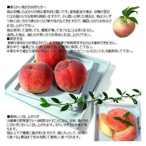 お中元 ギフト 桃 モモ もも 山梨県産 特産品 白鳳 白桃 甲斐黄金桃 特秀 1.5kg 送料無料 一部地域を除く fruits-line 14