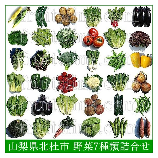 有機と旬で付き合う野菜セット 山梨県産 無農薬 無化学肥料 栽培野菜9品目詰め合わせ 送料無料 一部地域を除く|fruits-line