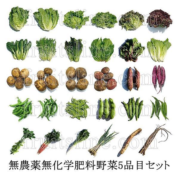 有機と旬で付き合うお試し野菜セット 山梨県産 特産品 名物商品 無農薬 無化学肥料 栽培野菜5品目詰め合わせ 送料無料 一部地域を除く|fruits-line