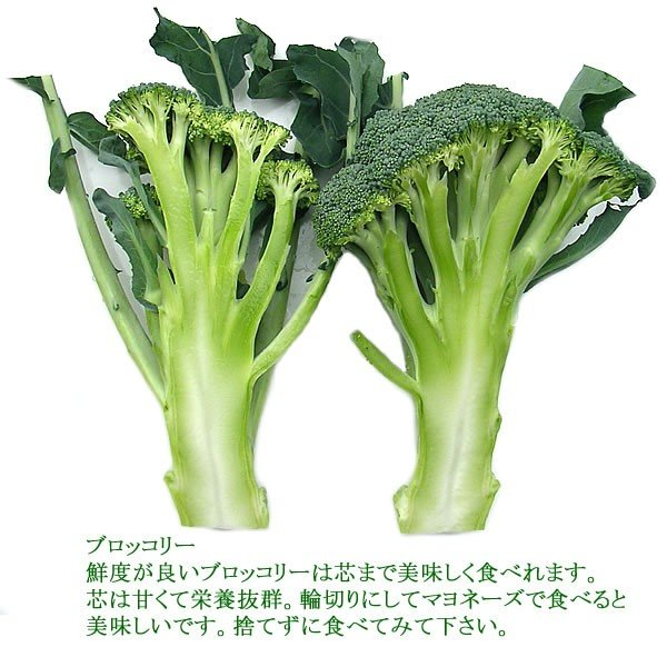 有機と旬で付き合うお試し野菜セット 山梨県産 特産品 名物商品 無農薬 無化学肥料 栽培野菜5品目詰め合わせ 送料無料 一部地域を除く|fruits-line|10