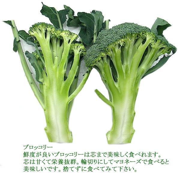 有機と旬で付き合う野菜セット 山梨県産 無農薬 無化学肥料 栽培野菜9品目詰め合わせ 送料無料 一部地域を除く|fruits-line|10