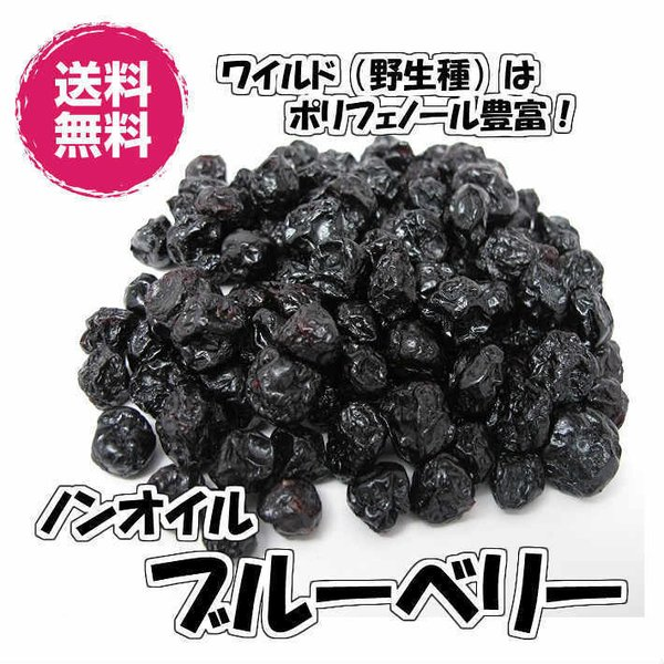 ノンオイル ブルーベリー アメリカ産 1kg 野生種 ドライフルーツ 送料無料(ブルーベリー1kg)チャック袋 ワイルドブルーベリー 1kg US産 業務用