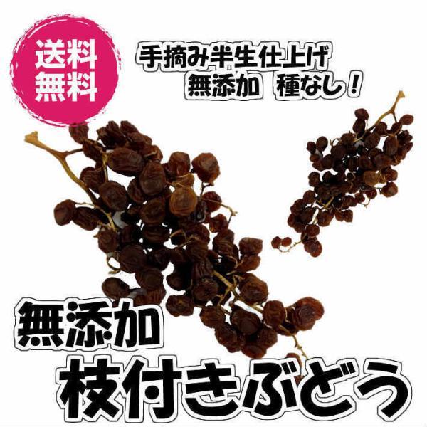 無添加枝付きぶどう ドライフルーツ 4.5kg 送料無料 ドライレーズン 赤ぶどう (枝付ぶどう4.5kg) 砂糖不使用 レーズン  食品添加物不使用 ドライ 業務用