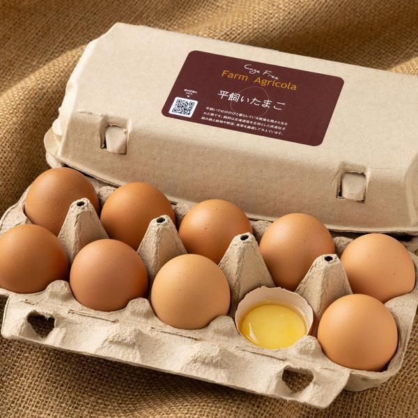 平飼い有精卵 10個×3パック (北海道 Farm Agricola) 産地直送 アグリコラ たまご