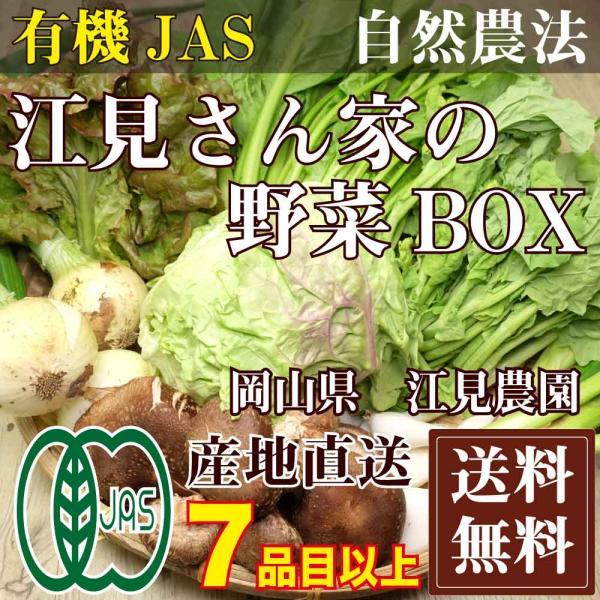 [クール便無料] 江見さん家の野菜BOX 自然農法 有機JAS (岡山県 江見農園) 産地直送|fs21