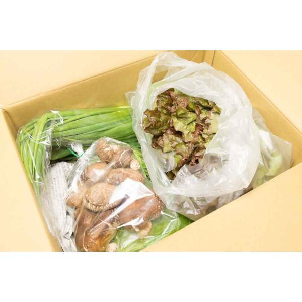 [クール便無料] 江見さん家の野菜BOX 自然農法 有機JAS (岡山県 江見農園) 産地直送|fs21|02