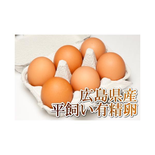 平飼い有精卵 6個×12パック(広島県 はやしなちゅらるふぁーむ)送料無料・産地直送・健康たまご