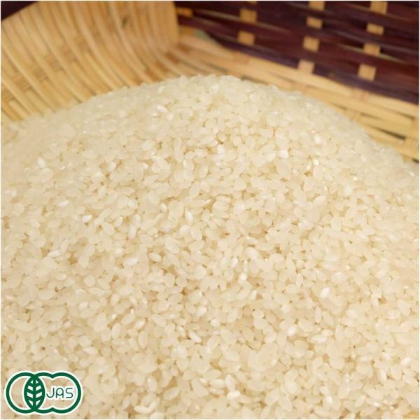 お米 30年度産 有機 あきたこまち 精米 10kg 有機栽培米 オーガニック (岩手県 いわて大東有機) 産地直送 fs21
