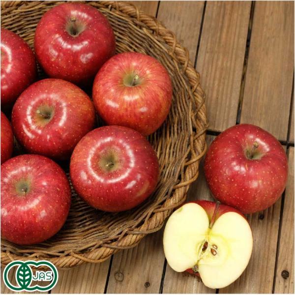 有機 りんご(赤)A品 3kg箱 有機JAS (青森県 北上農園) 産地直送