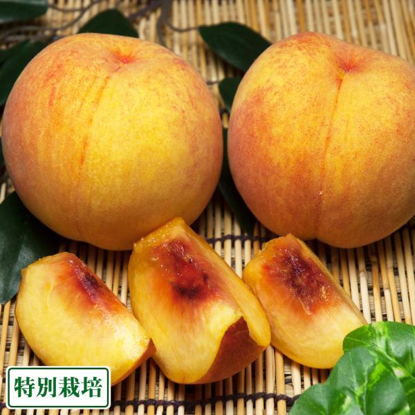【クール便】桃 紅黄金桃 2kg 特別栽培 (山形県 森谷果樹園) 産地直送