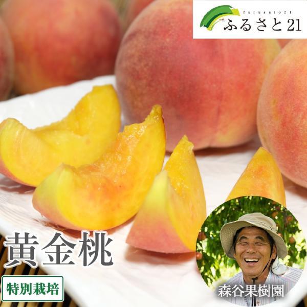 【クール便】桃 黄金桃 4kg 特別栽培  (山形県 森谷果樹園) 産地直送
