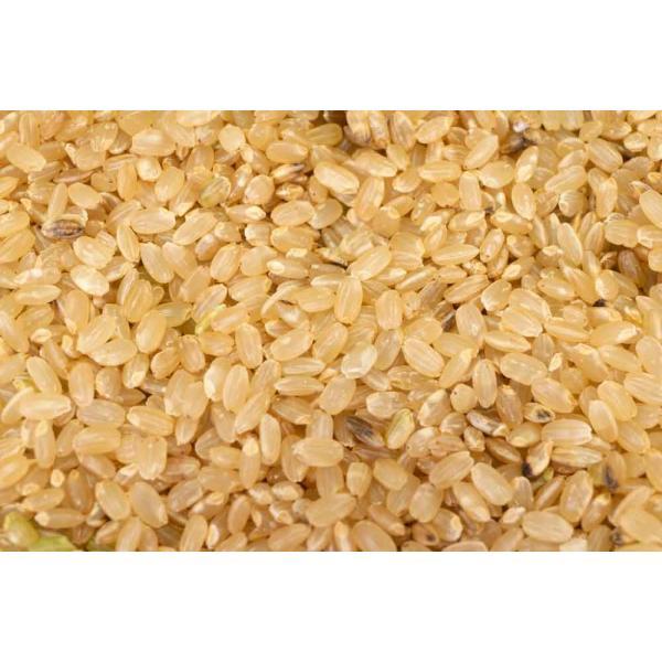 お米 30年度米 つがるロマン 玄米 20kg 無農薬 (青森県 小田農園) 産地直送|fs21|02