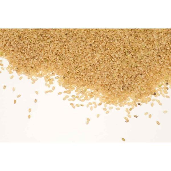 お米 30年度米 つがるロマン 玄米 20kg 無農薬 (青森県 小田農園) 産地直送|fs21|03