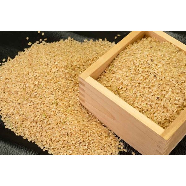 お米 30年度米 つがるロマン 玄米 20kg 無農薬 (青森県 小田農園) 産地直送|fs21|04