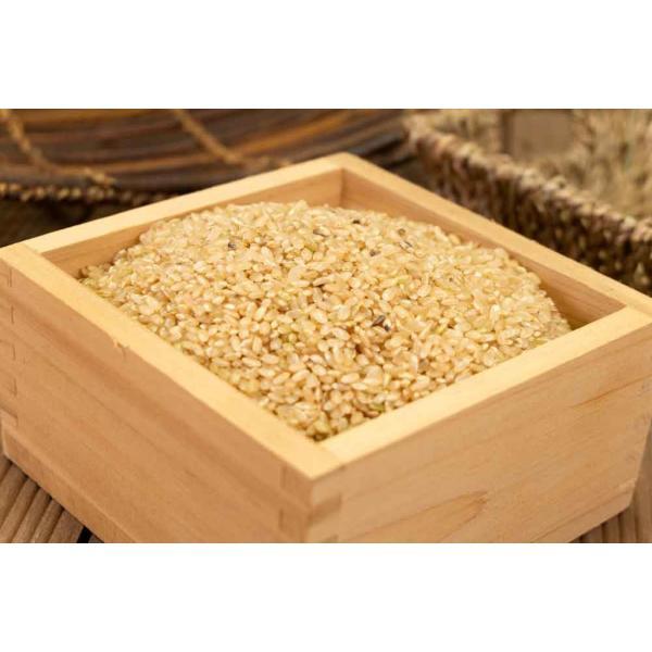 お米 30年度米 つがるロマン 玄米 20kg 無農薬 (青森県 小田農園) 産地直送|fs21|05