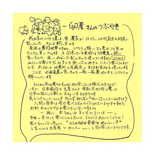 有精卵 40個箱詰め(北海道 卵ラン農場ムラタ)健康有精卵・送料無料・産地直送|fs21|03