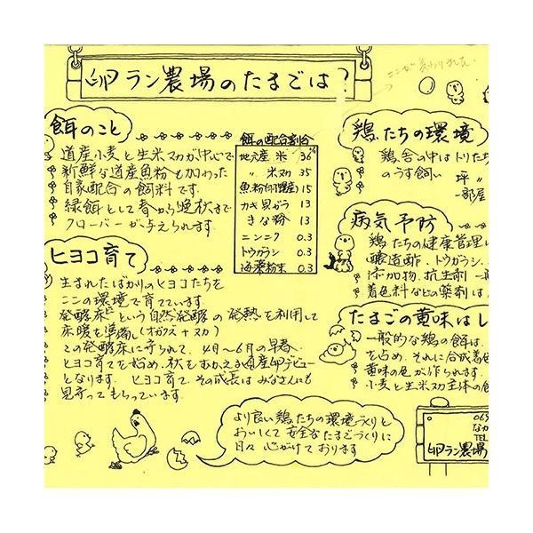 有精卵 40個箱詰め(北海道 卵ラン農場ムラタ)健康有精卵・送料無料・産地直送|fs21|04