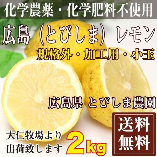 【クール便無料・規格外加工用】広島(とびしま)レモン 2kg 農薬不使用 (広島県 とびしま農園) fs21
