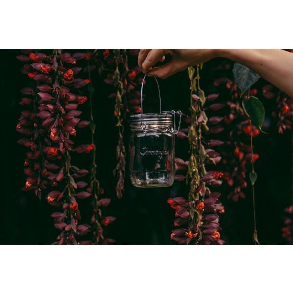 ソネングラス SONNENGLAS 瓶型ソーラーLEDライト ソネングラス Mini
